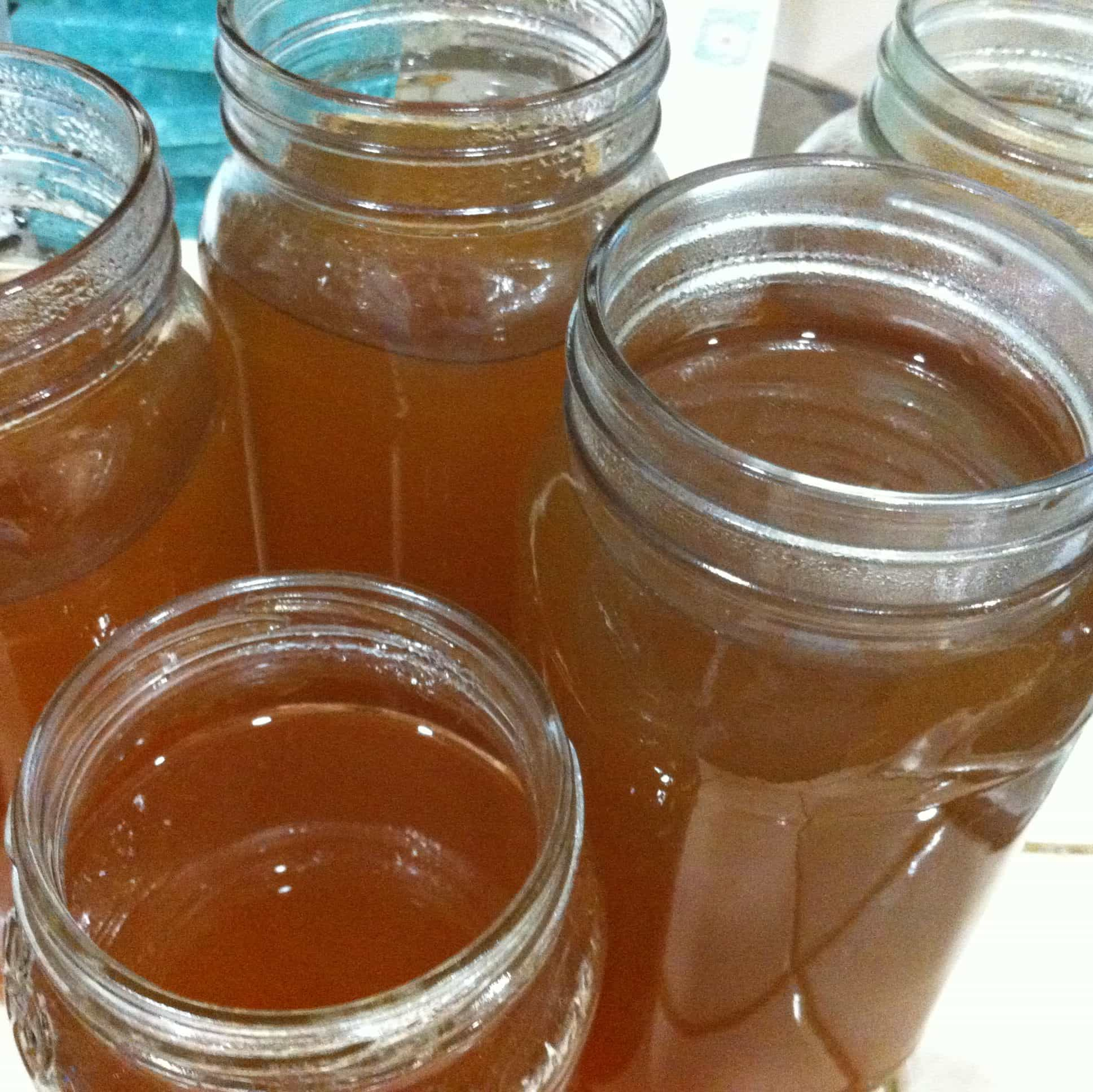 Glass Jars for Easy and No Cost Vegetable Stock. Abi Cowell