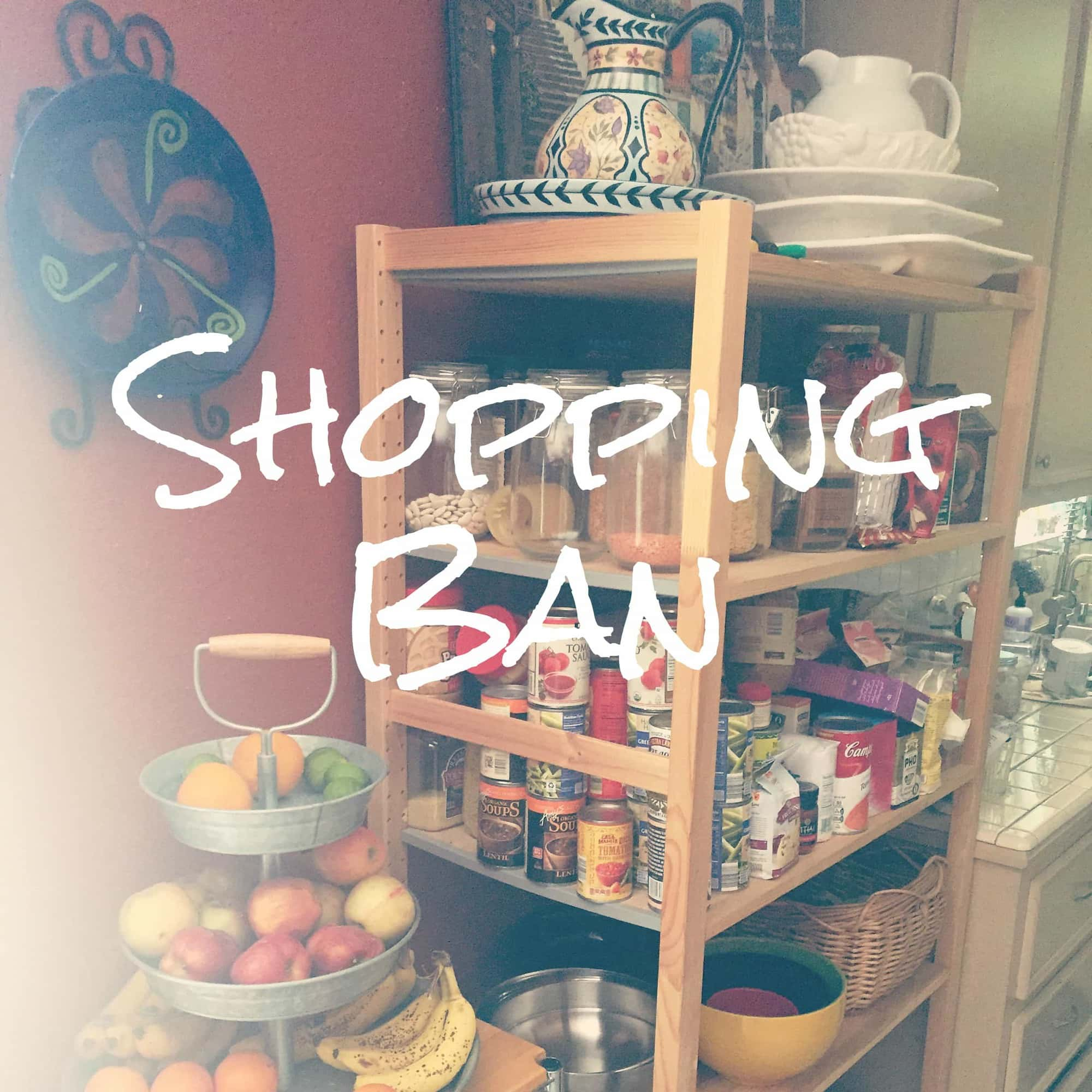 Grocery Shopping Ban by Very Veganish