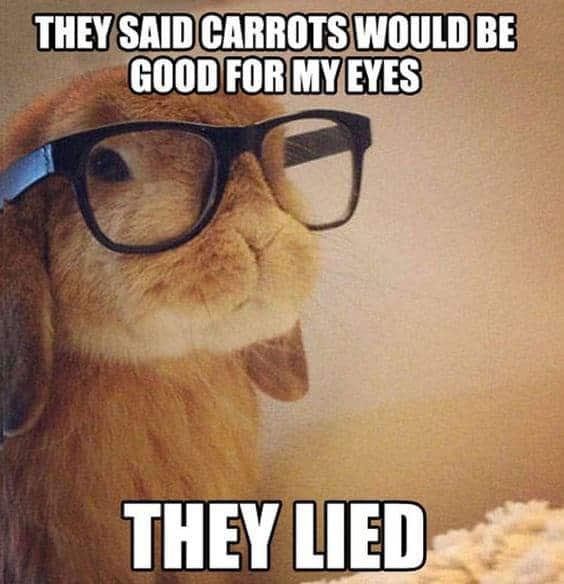 carrots funny vegan and food memes very veganish