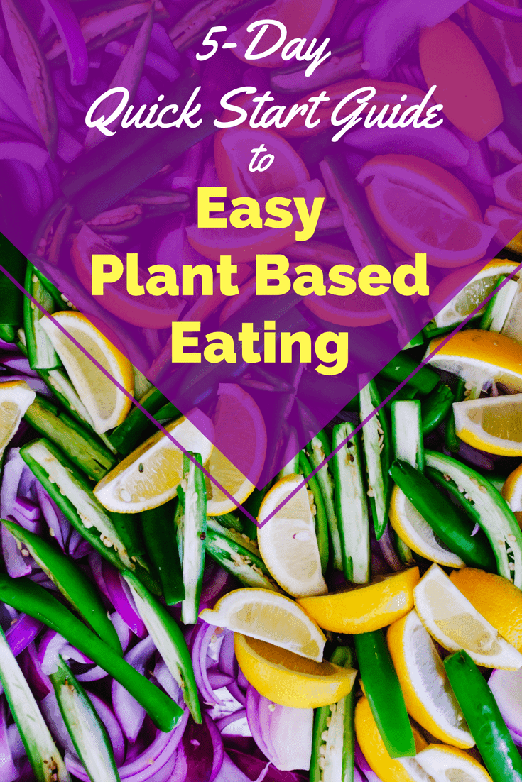 5 Day Quick Start Guide to Easy Plant Based Eating by Very Veganish