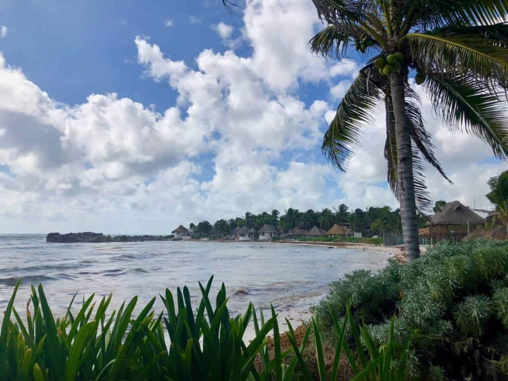 beach and ocean view at el pez hotel tulum restaurant