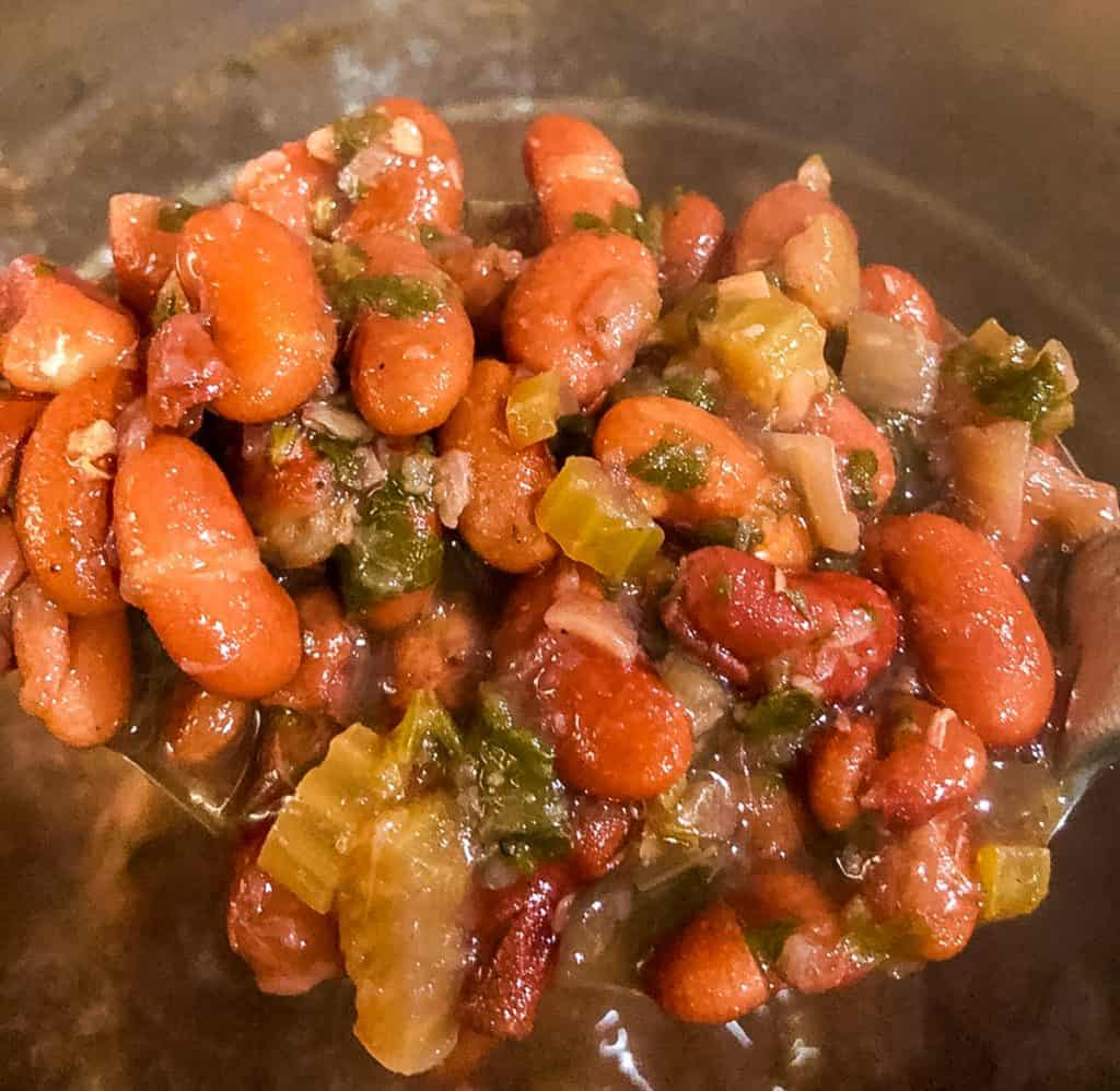 closeup of cooked beans